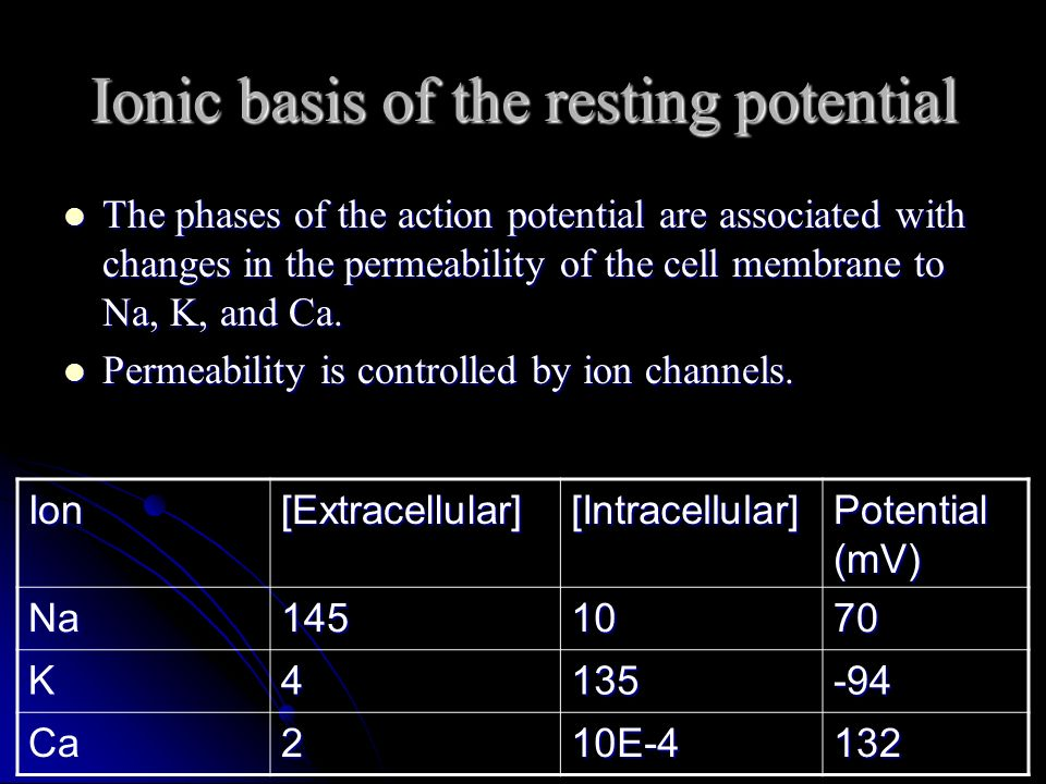 Mechanism of Rhythmicity The SA node resting potential is only - 55mV.