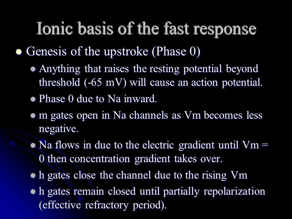 Ionic basis of the fast response Genesis of the upstroke (Phase 0) Genesis of the upstroke (Phase 0) Anything that raises the resting potential beyond