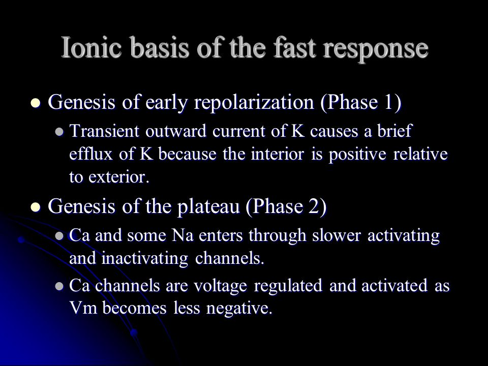 Ionic basis of the fast response Genesis of early repolarization (Phase 1) Genesis of early repolarization (Phase 1) Transient outward current of K ca
