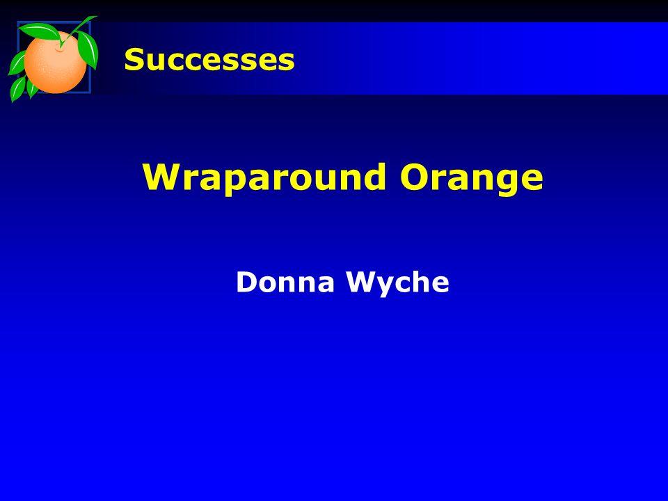 Wraparound Orange Donna Wyche Successes
