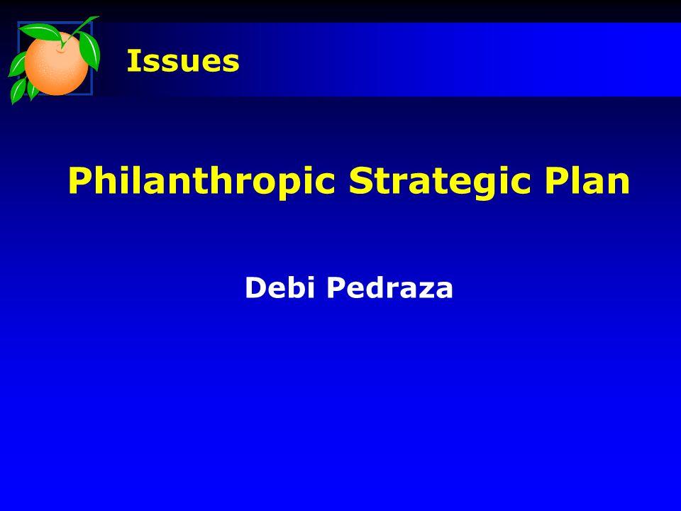 Philanthropic Strategic Plan Debi Pedraza Issues