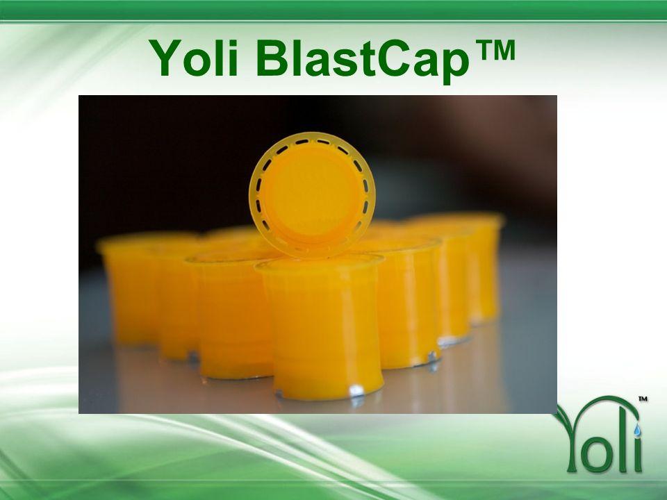 Yoli BlastCap