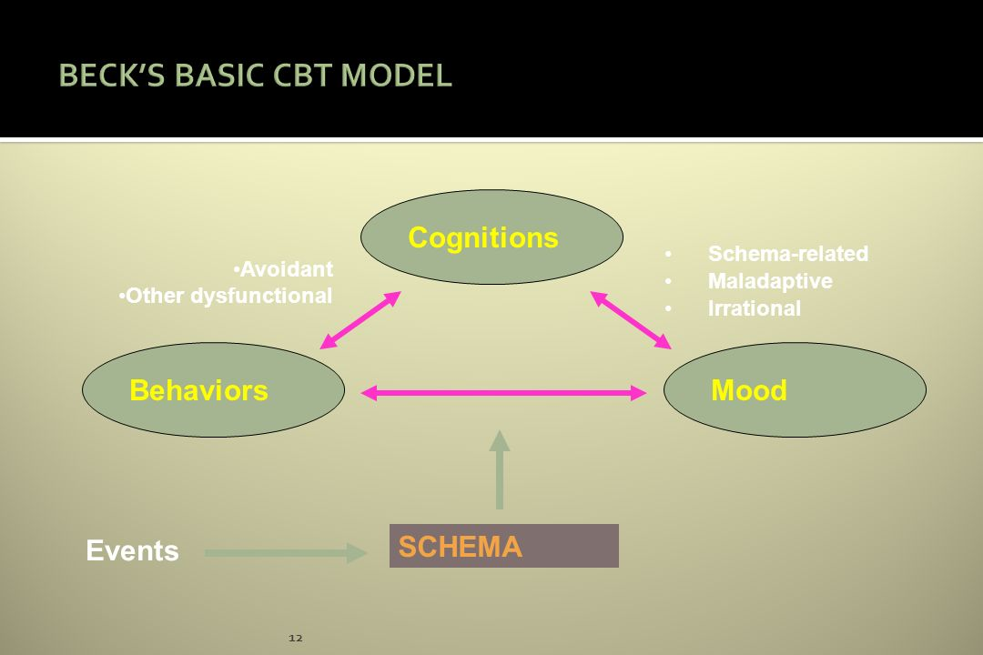 12 Cognitions MoodBehaviors SCHEMA Events Schema-related Maladaptive Irrational Avoidant Other dysfunctional