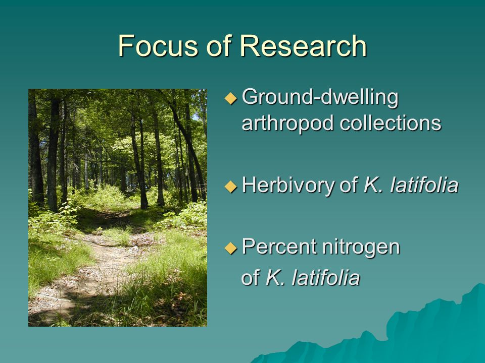 Focus of Research Ground-dwelling arthropod collections Ground-dwelling arthropod collections Herbivory of K.
