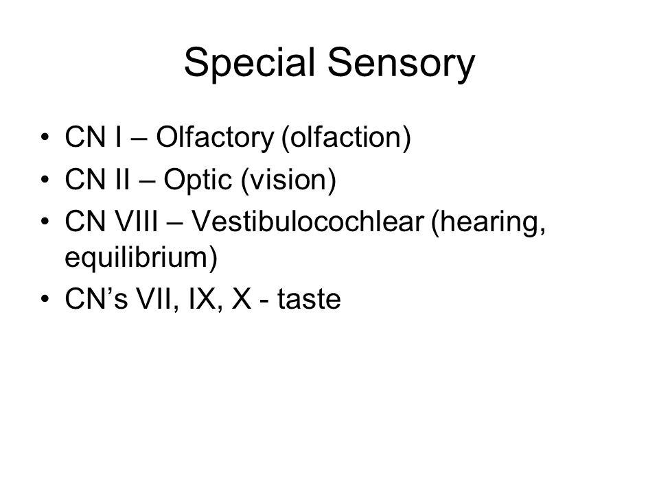 Special Sensory CN I – Olfactory (olfaction) CN II – Optic (vision) CN VIII – Vestibulocochlear (hearing, equilibrium) CNs VII, IX, X - taste