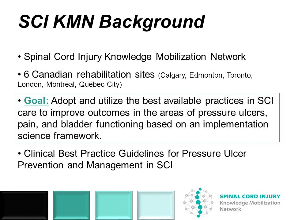 SCI KMN Background Spinal Cord Injury Knowledge Mobilization Network 6 Canadian rehabilitation sites (Calgary, Edmonton, Toronto, London, Montreal, Qu