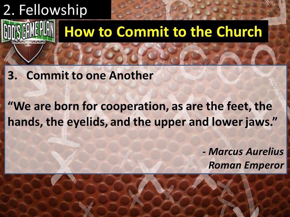 2. Fellowship 3. Commit to one Another We are born for cooperation, as are the feet, the hands, the eyelids, and the upper and lower jaws. - Marcus Au