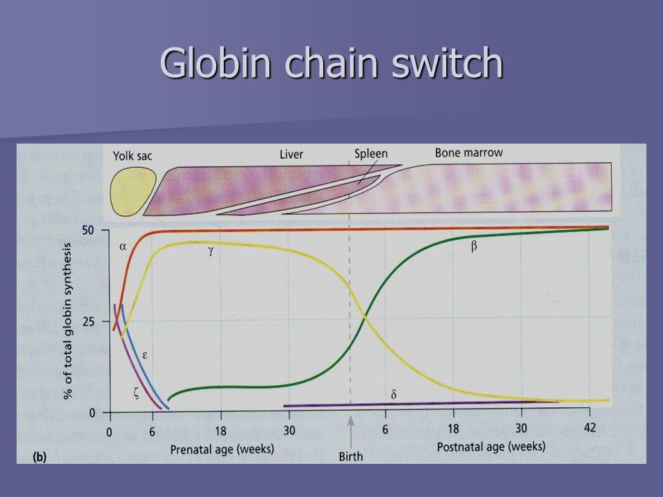 Globin chain switch