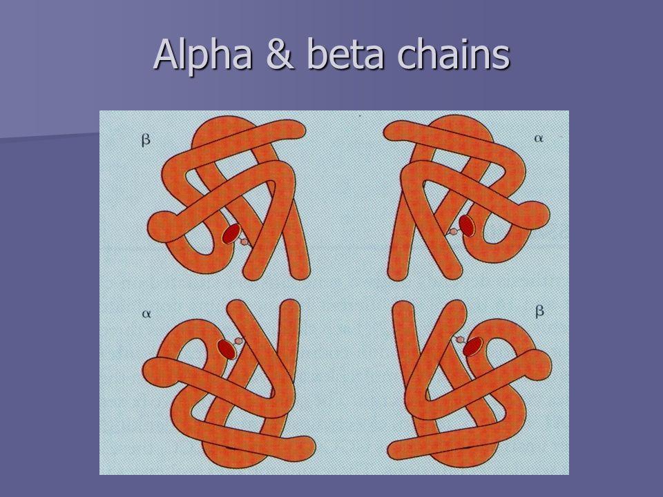 Alpha & beta chains