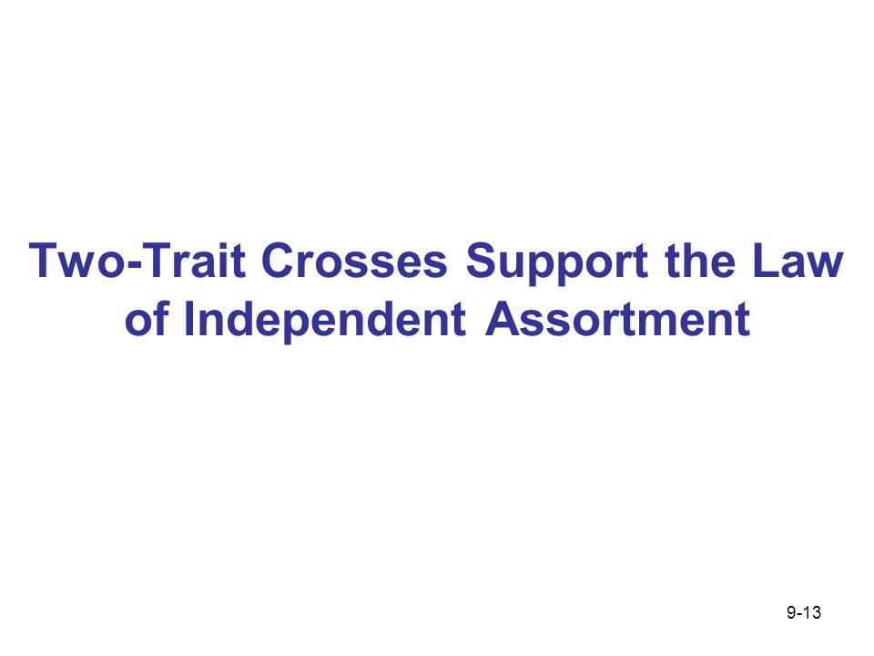 Two-Trait Crosses Support the Law of Independent Assortment 9-13