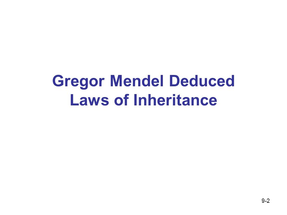 9.1 A blending model of inheritance existed prior to Mendel Austrian monk Gregor Mendel developed the fundamental laws of heredity after performing a series of experiments with pea plants 9-3