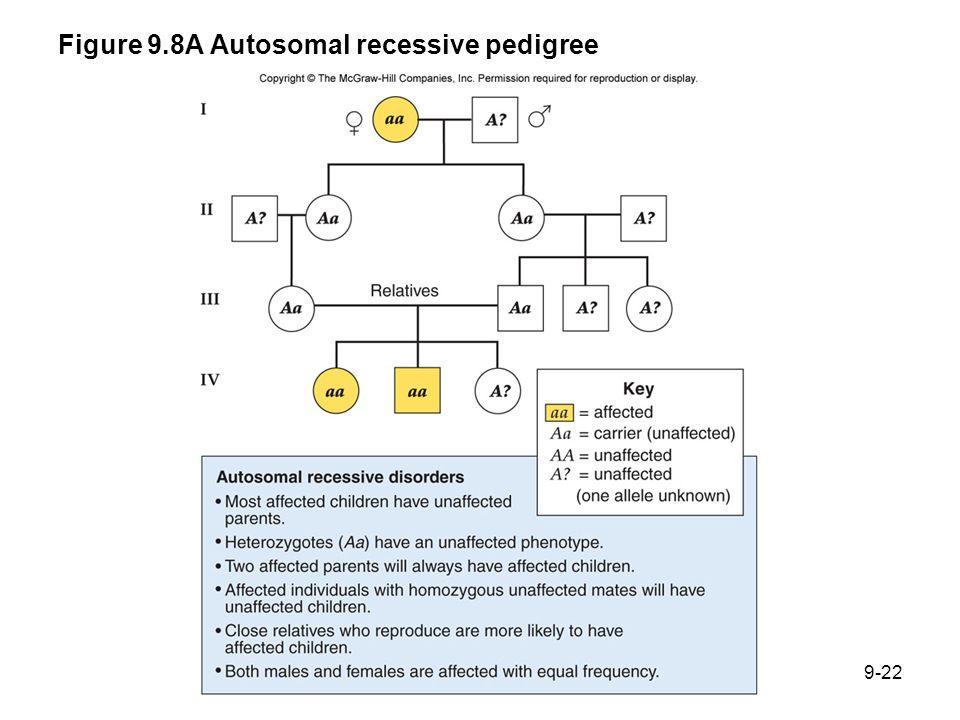 Figure 9.8A Autosomal recessive pedigree 9-22