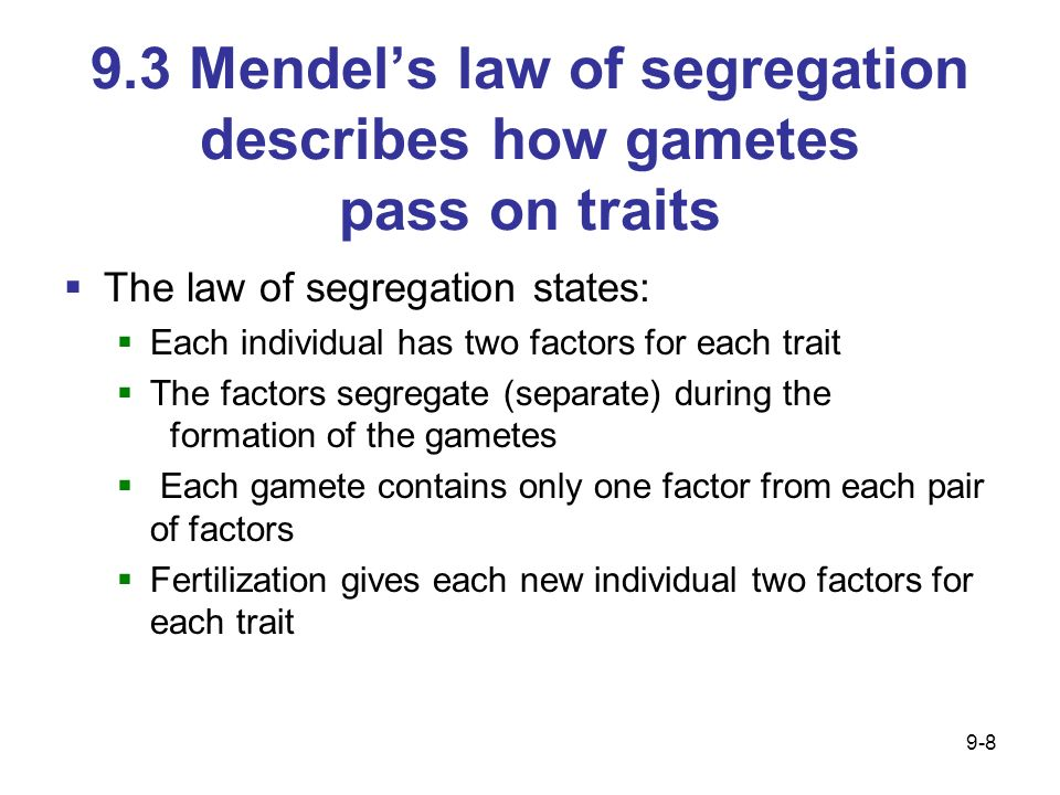 9.3 Mendels law of segregation describes how gametes pass on traits The law of segregation states: Each individual has two factors for each trait The