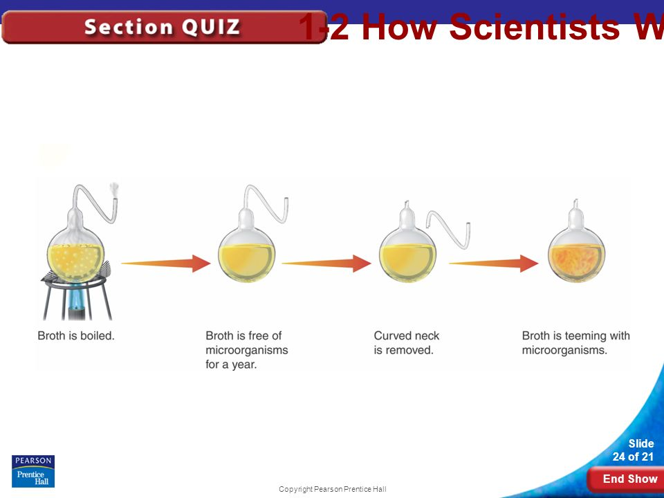 End Show Slide 24 of 21 Copyright Pearson Prentice Hall 1-2 How Scientists Work