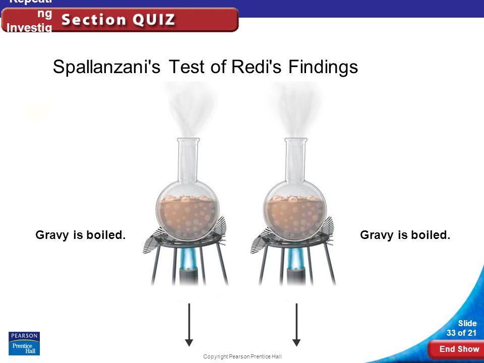 End Show Slide 33 of 21 Copyright Pearson Prentice Hall Repeati ng Investig ations Spallanzani's Test of Redi's Findings Gravy is boiled.