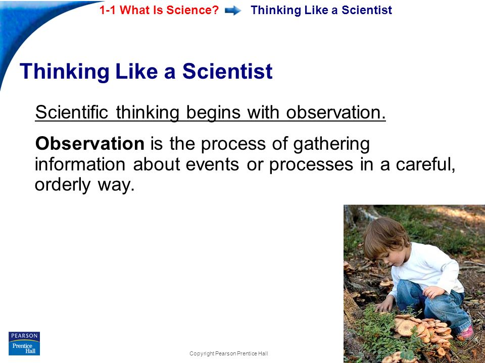 End Show 1-1 What Is Science? Slide 6 of 21 Copyright Pearson Prentice Hall Thinking Like a Scientist Scientific thinking begins with observation. Obs