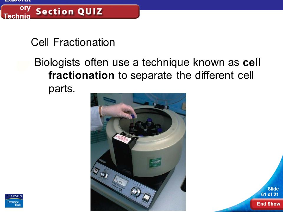 End Show Slide 61 of 21 Copyright Pearson Prentice Hall Laborat ory Techniq ues Cell Fractionation Biologists often use a technique known as cell frac