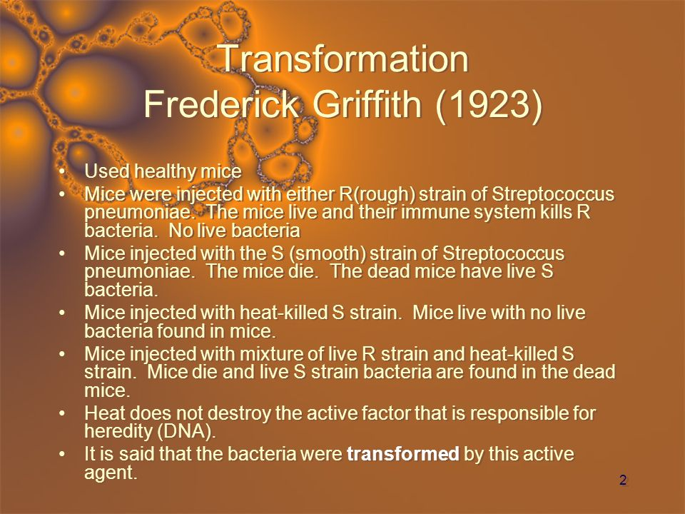 3 Transformation Frederick Griffith (1923)