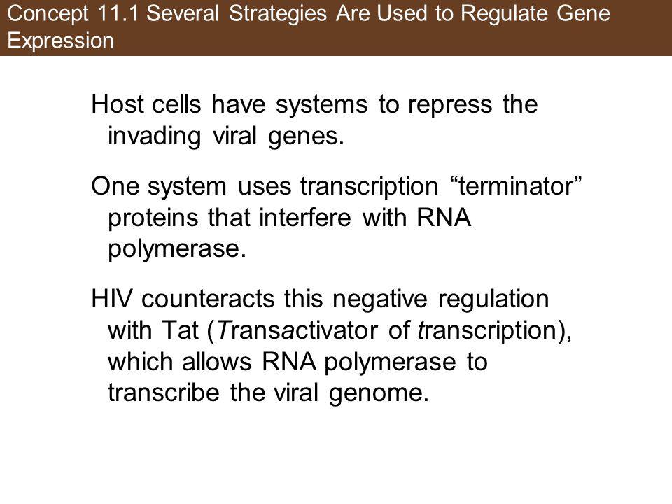 Figure 11.5 Regulation of Transcription by HIV (Part 1)