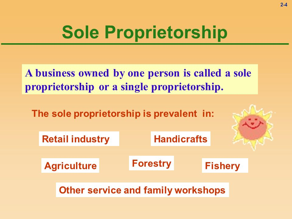 2-4 Sole Proprietorship A business owned by one person is called a sole proprietorship or a single proprietorship. Retail industryHandicrafts Agricult