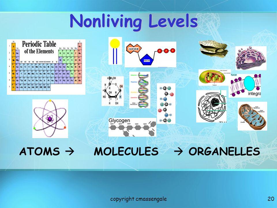 20 ATOMS MOLECULES ORGANELLES Nonliving Levels copyright cmassengale