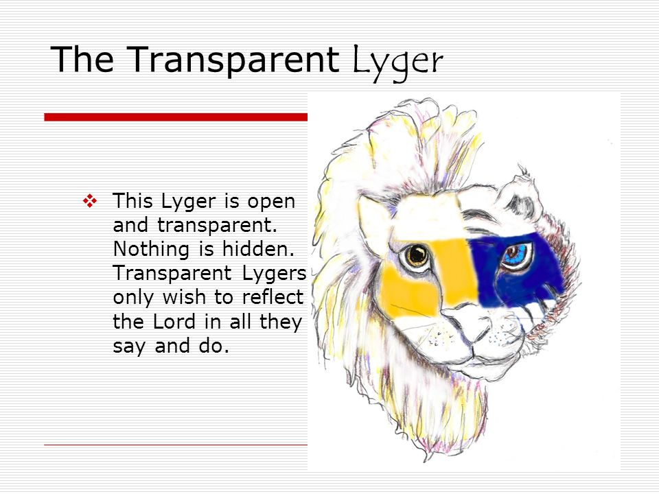 The Transparent Lyger This Lyger is open and transparent. Nothing is hidden. Transparent Lygers only wish to reflect the Lord in all they say and do.