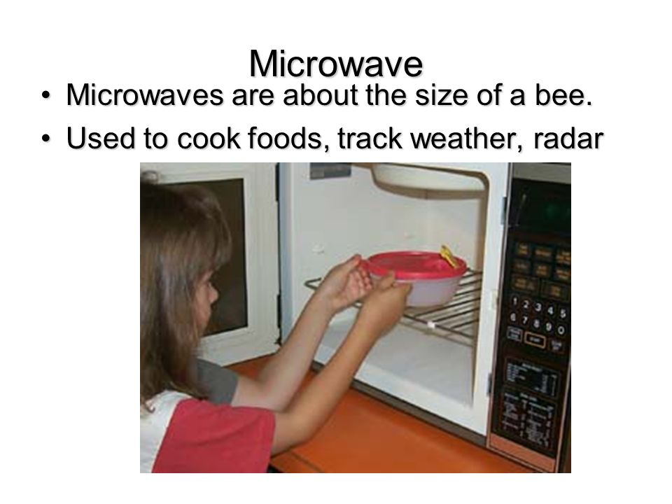 Microwave Microwaves are about the size of a bee.Microwaves are about the size of a bee.