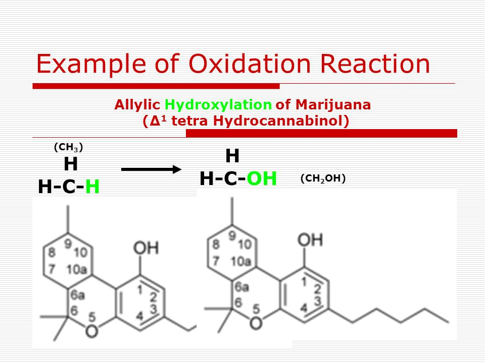 H H-C-H I H H-C-OH H Example of Oxidation Reaction Allylic Hydroxylation of Marijuana (Δ 1 tetra Hydrocannabinol) (CH 3 ) (CH 2 OH)