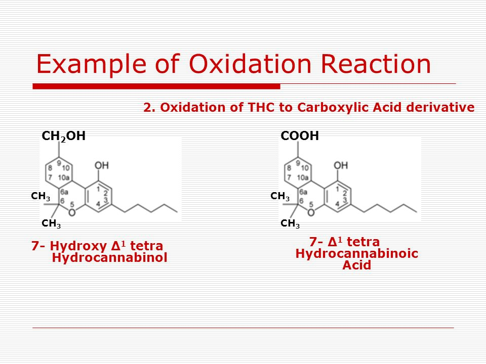 CH 2 OH CH 3 7- Hydroxy Δ 1 tetra Hydrocannabinol Example of Oxidation Reaction COOH CH 3 2. Oxidation of THC to Carboxylic Acid derivative 7- Δ 1 tet
