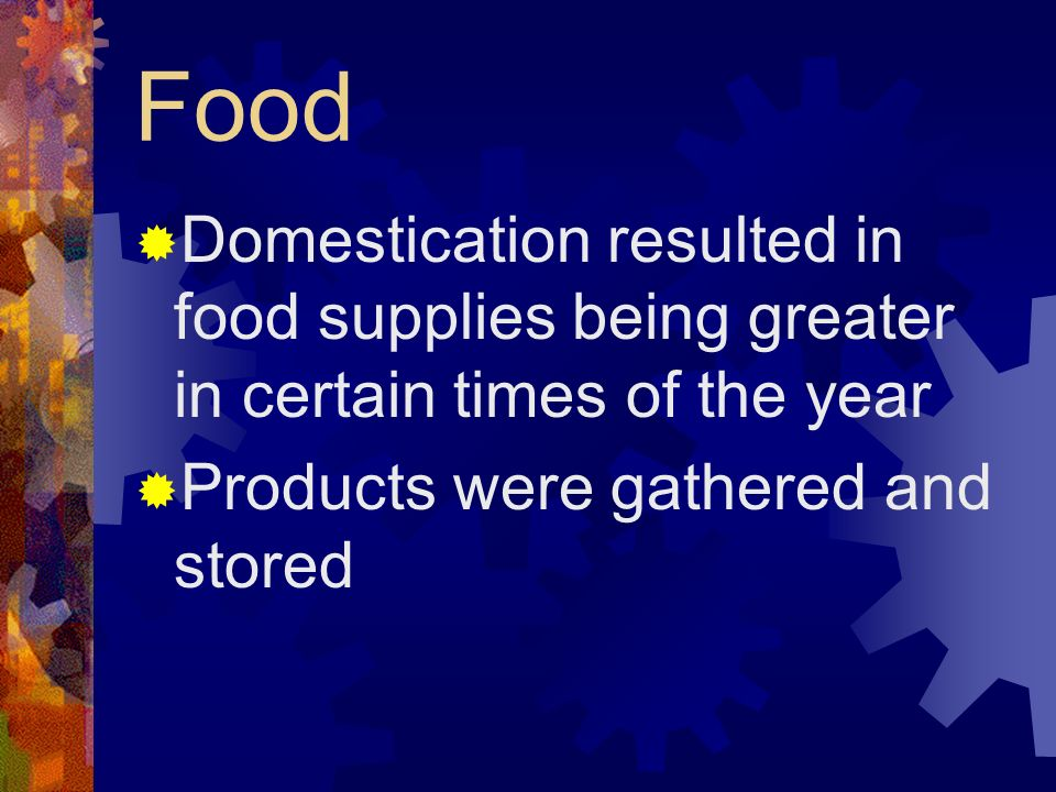 Food Domestication resulted in food supplies being greater in certain times of the year Products were gathered and stored