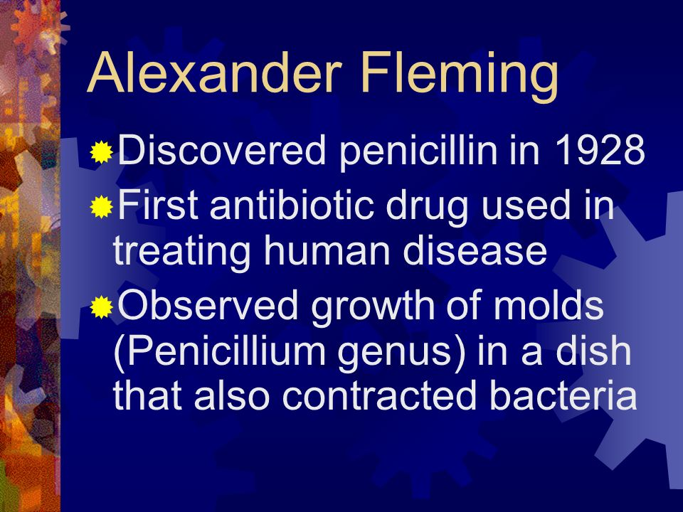 Alexander Fleming Discovered penicillin in 1928 First antibiotic drug used in treating human disease Observed growth of molds (Penicillium genus) in a