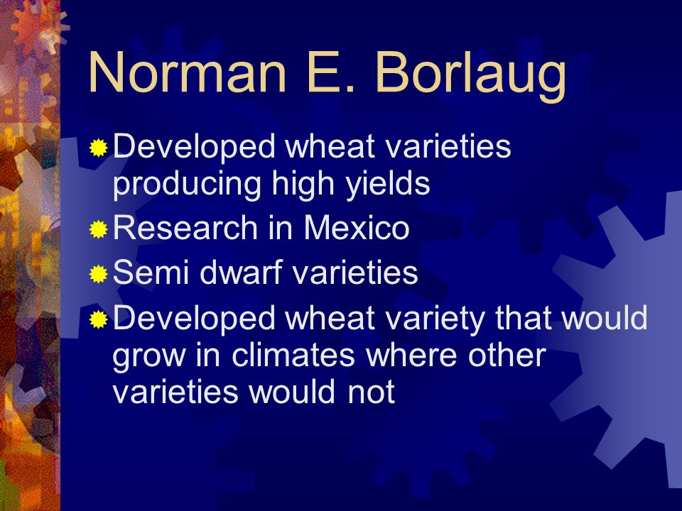 Norman E. Borlaug Developed wheat varieties producing high yields Research in Mexico Semi dwarf varieties Developed wheat variety that would grow in c