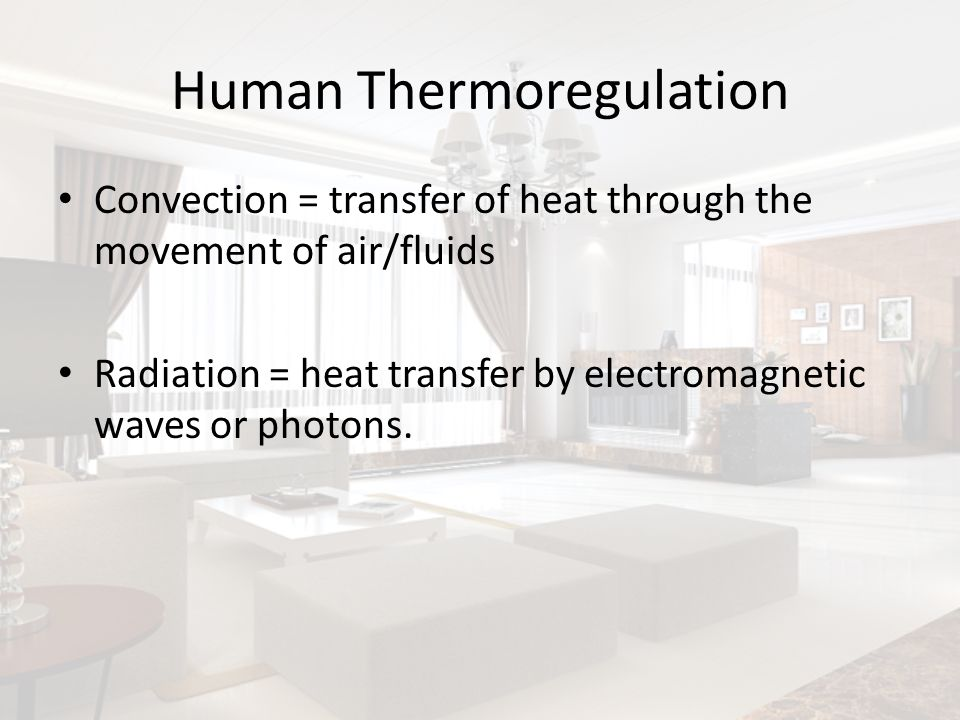 Human Thermoregulation Convection = transfer of heat through the movement of air/fluids Radiation = heat transfer by electromagnetic waves or photons.