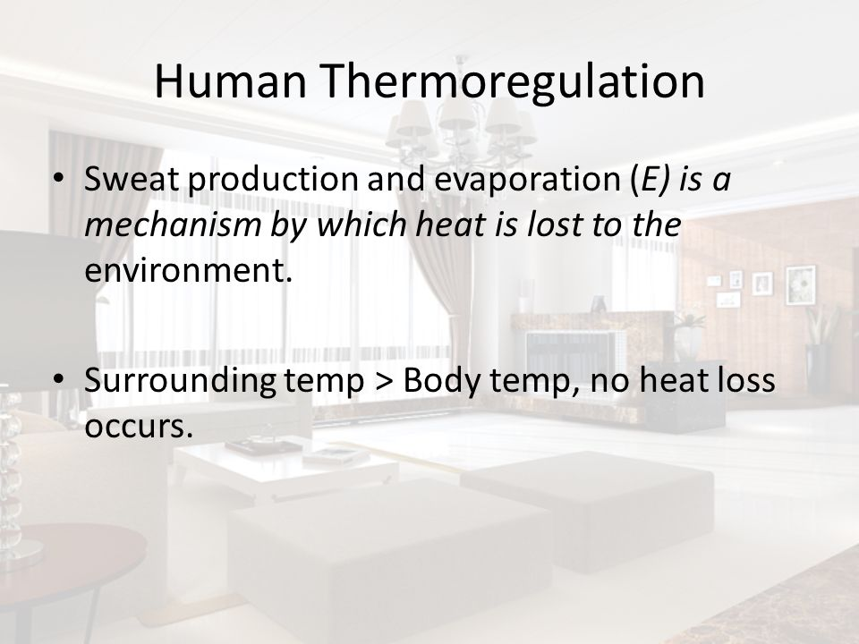 Human Thermoregulation Sweat production and evaporation (E) is a mechanism by which heat is lost to the environment. Surrounding temp > Body temp, no