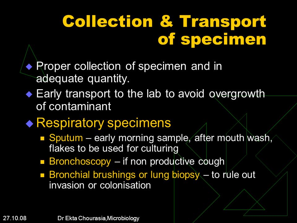 27.10.08 Dr Ekta Chourasia,Microbiology Collection & Transport of specimen Proper collection of specimen and in adequate quantity. Early transport to