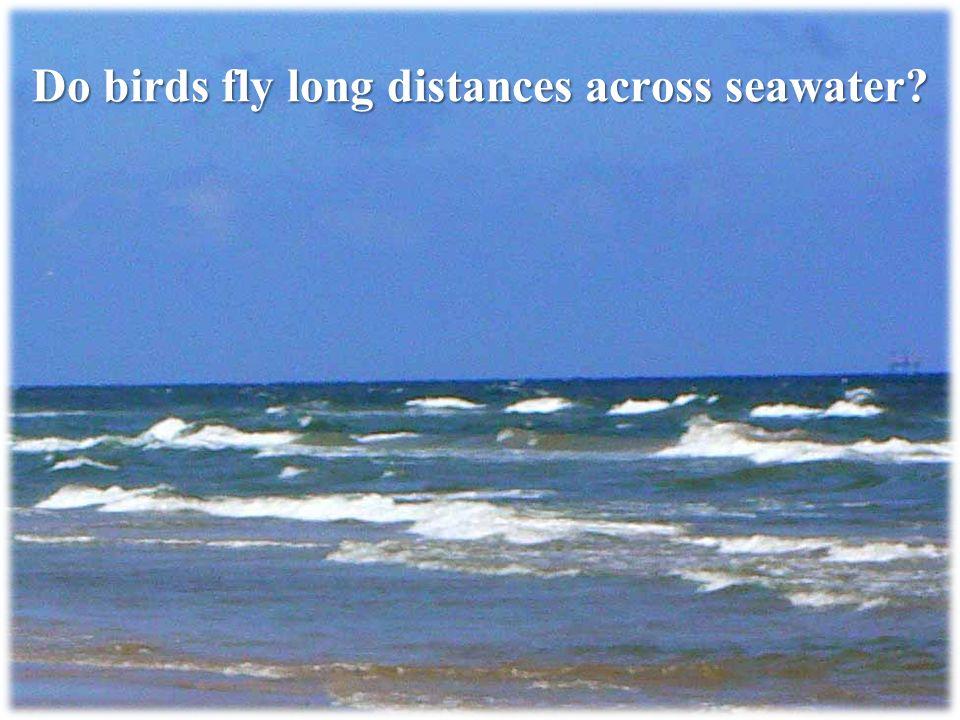 Do birds fly long distances across seawater?