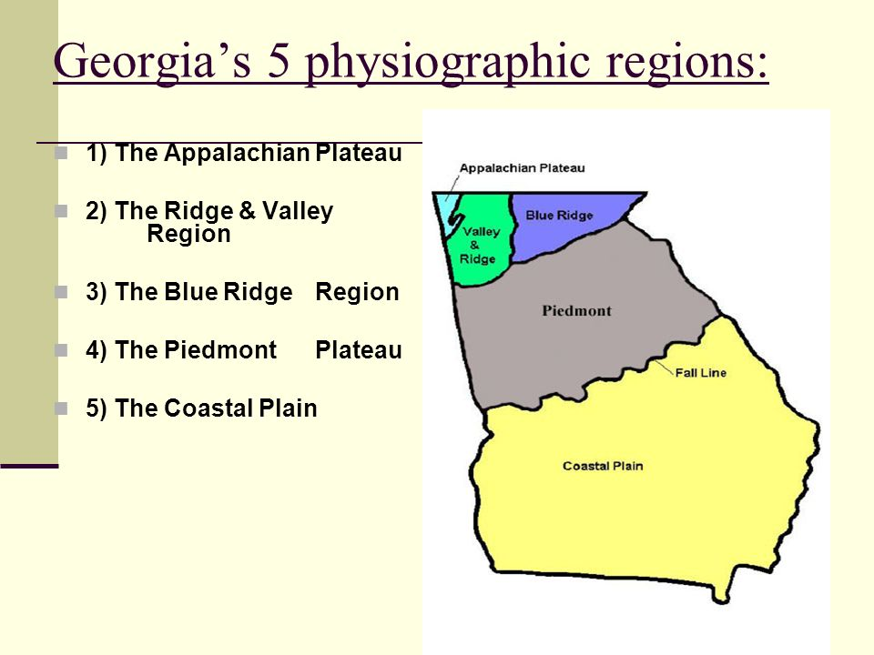 Georgias 5 physiographic regions: 1) The Appalachian Plateau 2) The Ridge & Valley Region 3) The Blue Ridge Region 4) The Piedmont Plateau 5) The Coastal Plain