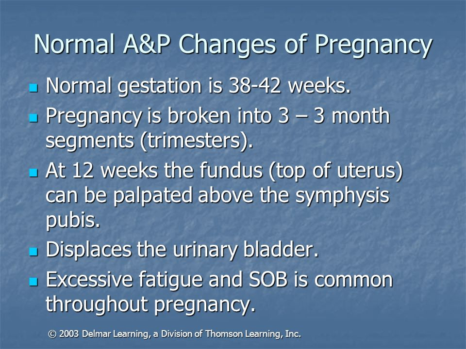 Normal A&P Changes of Pregnancy Normal gestation is 38-42 weeks. Normal gestation is 38-42 weeks. Pregnancy is broken into 3 – 3 month segments (trime
