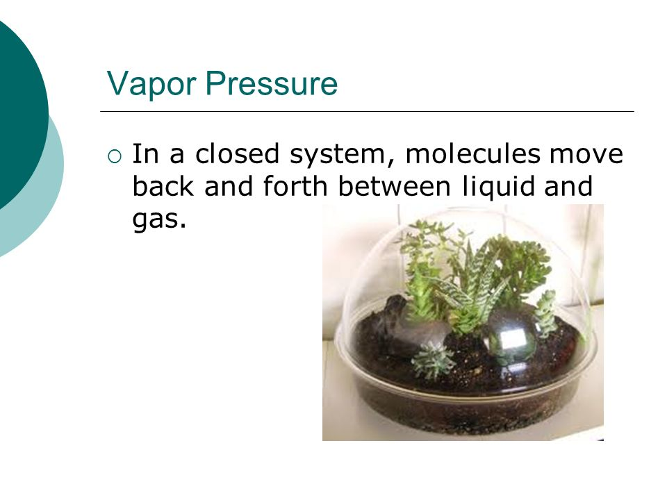 Vapor Pressure In a closed system, molecules move back and forth between liquid and gas.