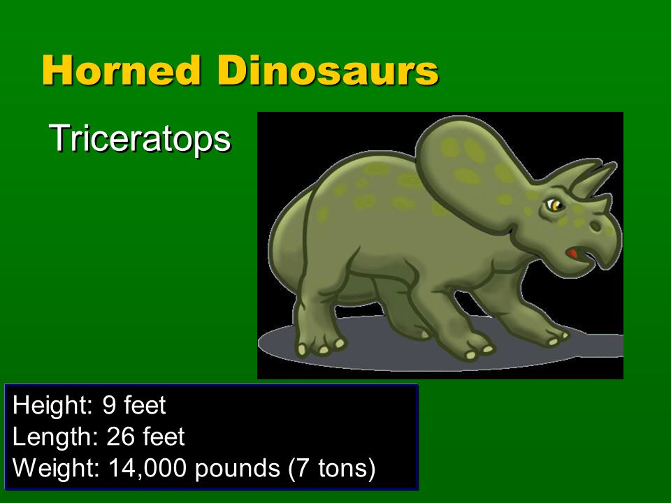 Triceratops Height: 9 feet Length: 26 feet Weight: 14,000 pounds (7 tons) Horned Dinosaurs