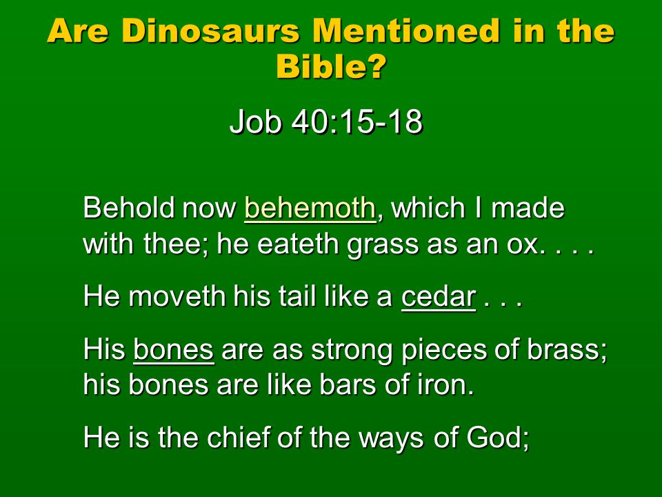 Are Dinosaurs Mentioned in the Bible? Behold now behemoth, which I made with thee; he eateth grass as an ox.... He moveth his tail like a cedar... His