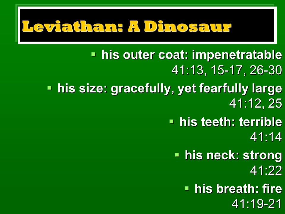 Leviathan: A Dinosaur his outer coat: impenetratable 41:13, 15-17, 26-30 his outer coat: impenetratable 41:13, 15-17, 26-30 his size: gracefully, yet