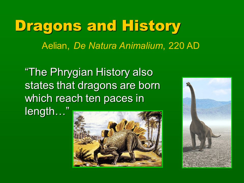 Dragons and History The Phrygian History also states that dragons are born which reach ten paces in length… Aelian, De Natura Animalium, 220 AD