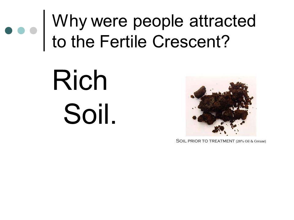 Rich Soil.