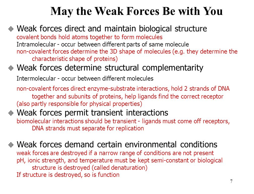 7 May the Weak Forces Be with You Weak forces direct and maintain b iological structure covalent bonds hold atoms together to form molecules Intramolecular - occur between different parts of same molecule non-covalent forces determine the 3D shape of molecules (e.g.