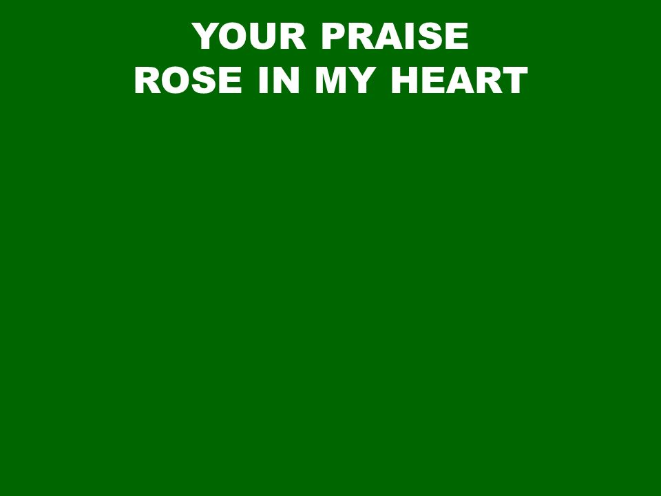 YOUR PRAISE ROSE IN MY HEART