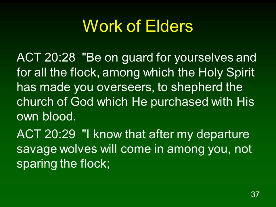 37 Work of Elders ACT 20:28