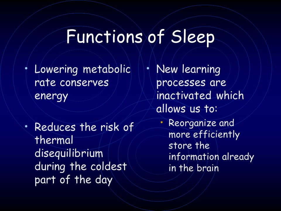 Functions of Sleep Lowering metabolic rate conserves energy Reduces the risk of thermal disequilibrium during the coldest part of the day New learning
