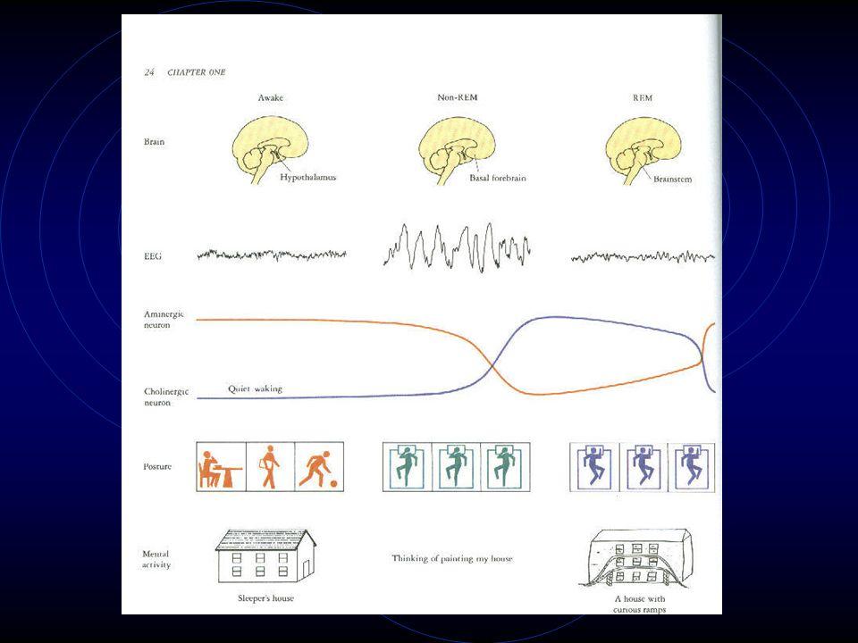 Characteristics of EEG sleep stages Unit V.