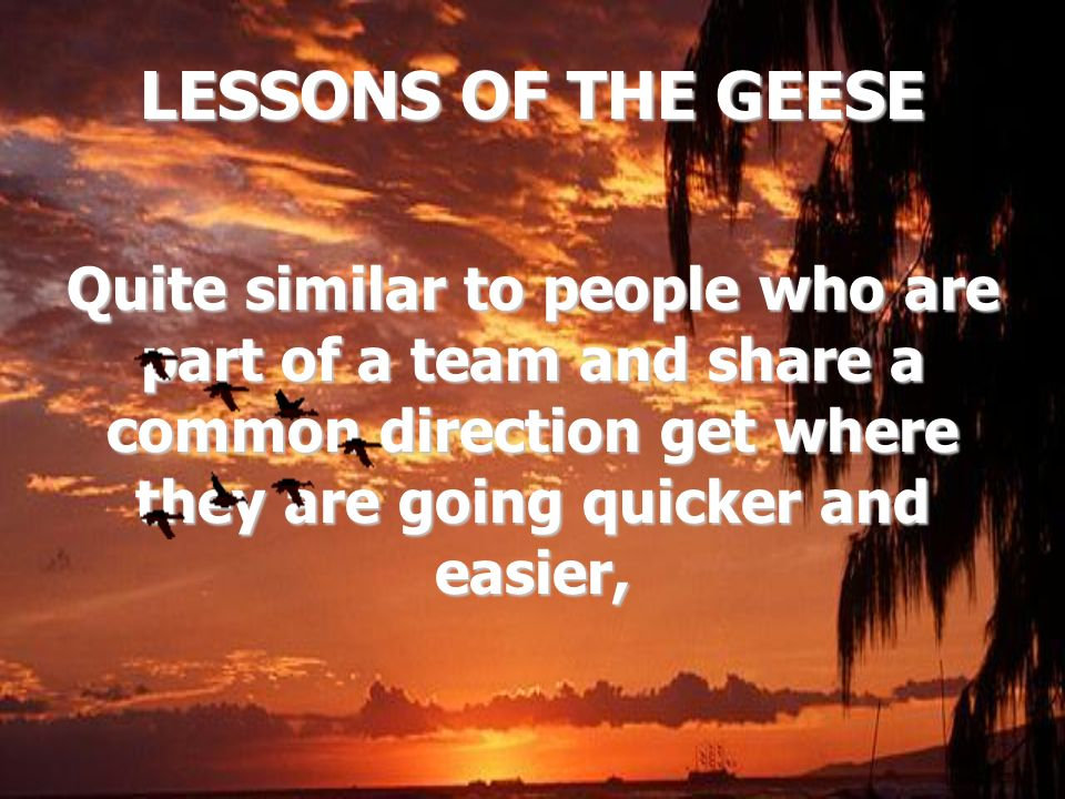 LESSONS OF THE GEESE Quite similar to people who are part of a team and share a common direction get where they are going quicker and easier,